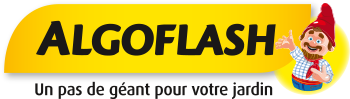Logo Algoflash